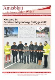 Amtlicher Teil - Amtsblatt vom 07. Dezember 2012 - Amt Oder-Welse