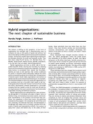 Hybrid organizations: The next chapter of sustainable business