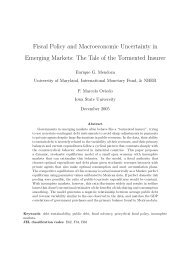 Fiscal Policy and Macroeconomic Uncertainty in Emerging Markets ...