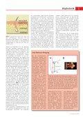 Fluoreszenzdiagnostik von Krebserkrankungen - Seite 2