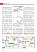Fluoreszenzdiagnostik von Krebserkrankungen - Seite 3