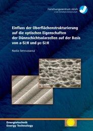 4 Optische Eigenschaften des strukturier - JUWEL ...