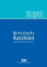 Wirtschafts 2012 2013 - Irle Kalckreuth LLP