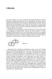 Leseprobe (pdf) - Wissenschaft Online