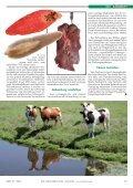 len Österreichs ist bereits jedes zweite Rind einmal im Leben mit - Page 2