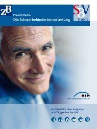 Schwerbehindertenvertretung: SBV-Guide, Praxisleitfaden