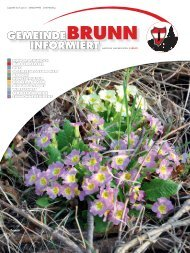 Gemeindezeitung 3/2012 - Brunn am Gebirge