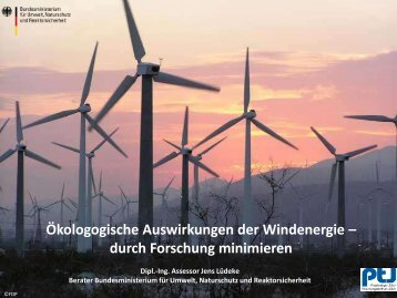 Ökologische Auswirkungen / Naturschutz - Repowering-Kommunal