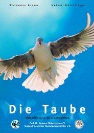 Die Taube - Dr. Kohaus