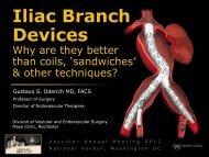 Iliac Branch Devices - VascularWeb