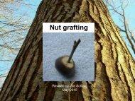 Nut grafting - Volunteer State Community College