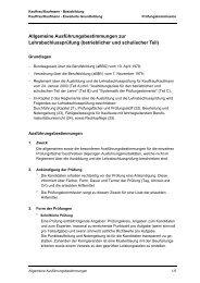 Allgemeine Ausführungsbestimmungen - Neue kaufmännische ...