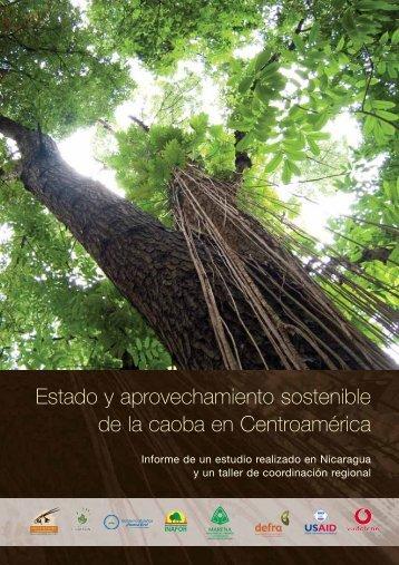 Estado y aprovechamiento sostenible de la caoba en Centroamérica