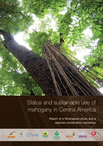 Status and sustainable use of mahogany in Central America