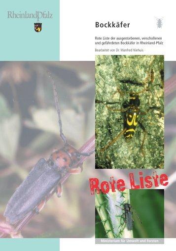 Bockkäfer - Landesamt für Umwelt, Wasserwirtschaft und ...
