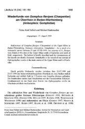 Wiederfunde von Gomphus flavipes (Charpentier) am ... - INULA