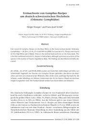 Libellula 27 (3-4)_4c.qxd:Libellula Supplement 8 - INULA