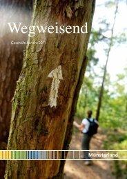 Geschäftsbericht 2011 (PDF-Datei, ca. 1,9 MB - Münsterland eV
