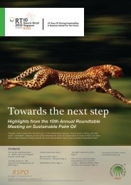 Towards the next step - Roundtable on Sustainable Palm Oil