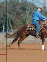 read article - Larson Performance Horses