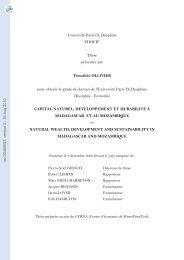 Capital naturel, développement et durabilité à Madagascar et au ...
