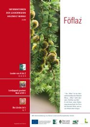 Föflaz - Ausgabe Dezember 2009 - Holzwelt Murau