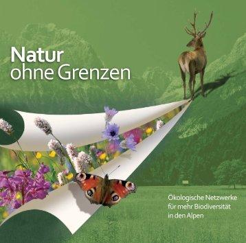 Ökologische Netzwerke