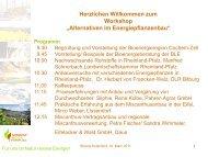 """Alternativen im Energiepflanzenbau"" Programm - Regionale ..."