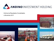 andino investment holding gestion de riesgos