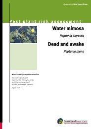 Water mimosa—Neptunia oleracea - Department of Primary Industries