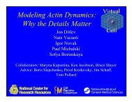 Modeling Actin Dynamics: Why the Details Matter