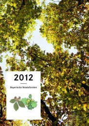 Download Jahresbericht 2012 - Bayerische Staatsforsten