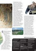 Parks - Euskadi - Seite 2