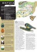 Parks - Euskadi - Seite 5