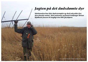 Jagten på det dødsdømte dyr - Steffen M. Skjærlund