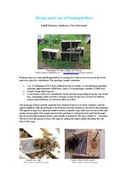 Hiving Package Bees - Country Rubes