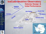 Design and initial performance of the IceCube detector