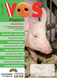 Neue Formel - Schweine.at