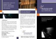 Flyer – Spendenaufruf Flügel - Musikschule Lauffen und Umgebung