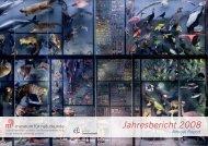 Jahresbericht 2008 - Museum für Naturkunde
