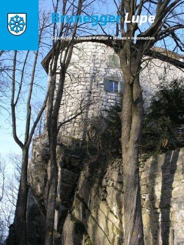 Diverse Artikel zum Schloss Brunegg - Publitrice.ch
