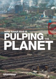 How Sinar Mas Is Pulping the Planet - Greenpeace
