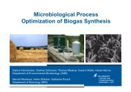 Microbiological Process Optimization of Biogas Synthesis