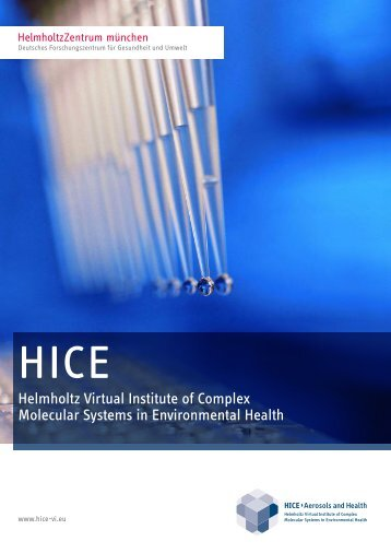 Helmholtz Virtual Institute of Complex Molecular Systems in ... - HICE
