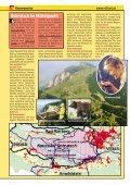 D - Villach - Seite 5