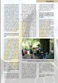 Lebensbahnen - St. Augustinus Kindergarten GmbH - Seite 7