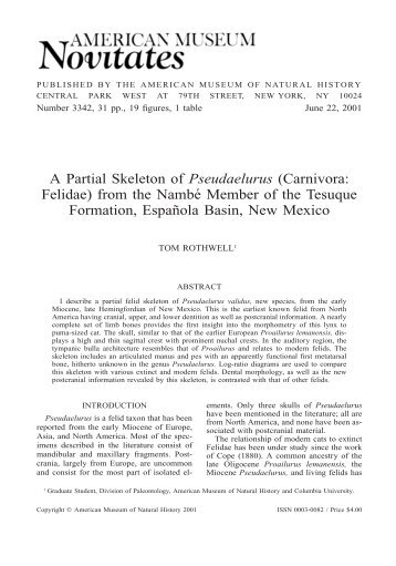 A Partial Skeleton of Pseudaelurus (Carnivora: Felidae) - American ...