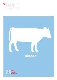 Rinder - B+M Haus- und Agrotech AG