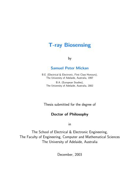 thesis on dsp download