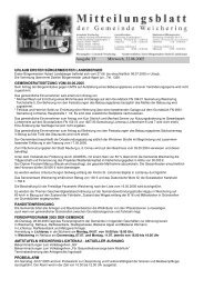 Ausgabe 13 Mittwoch, 22.06.2005 - Weichering